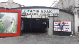 fatih adaklık kurbanlık satış ve kesim merkezi