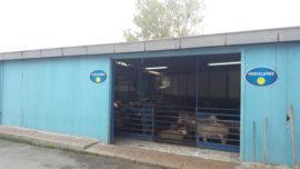Kağıthane adaklık kurbanlık satış ve kesim merkezi