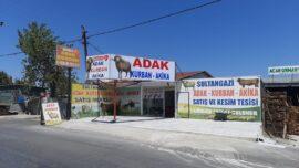 sultangazi adaklık kurbanlık satış ve kesim merkezi